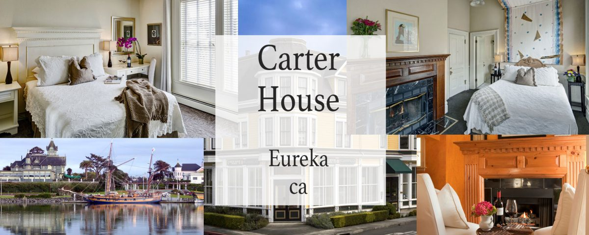 Carter House Inns review