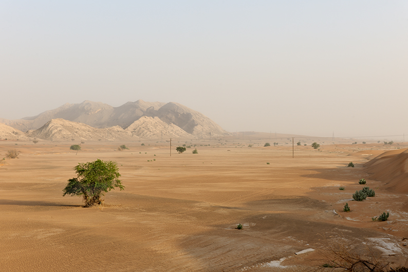 wadi in Sharjah