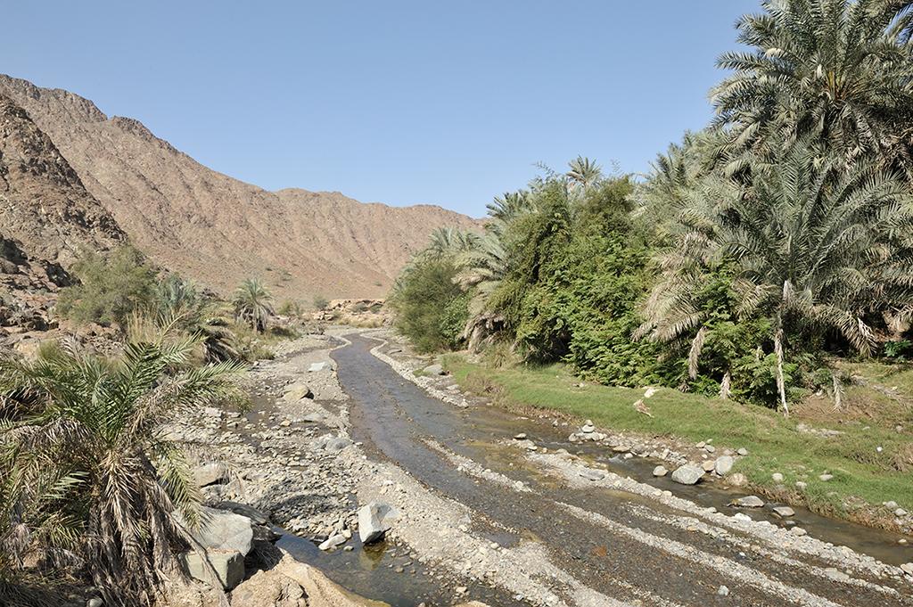 Wet Wadi Oman