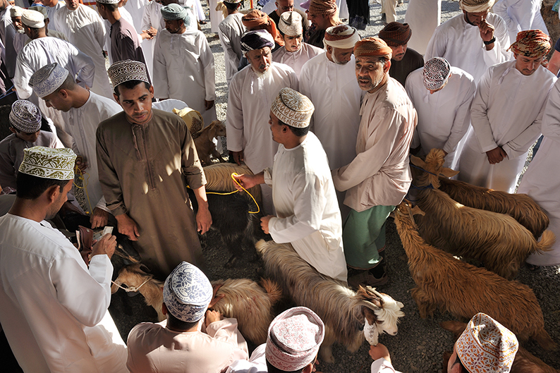 Nizwa animal market Oman