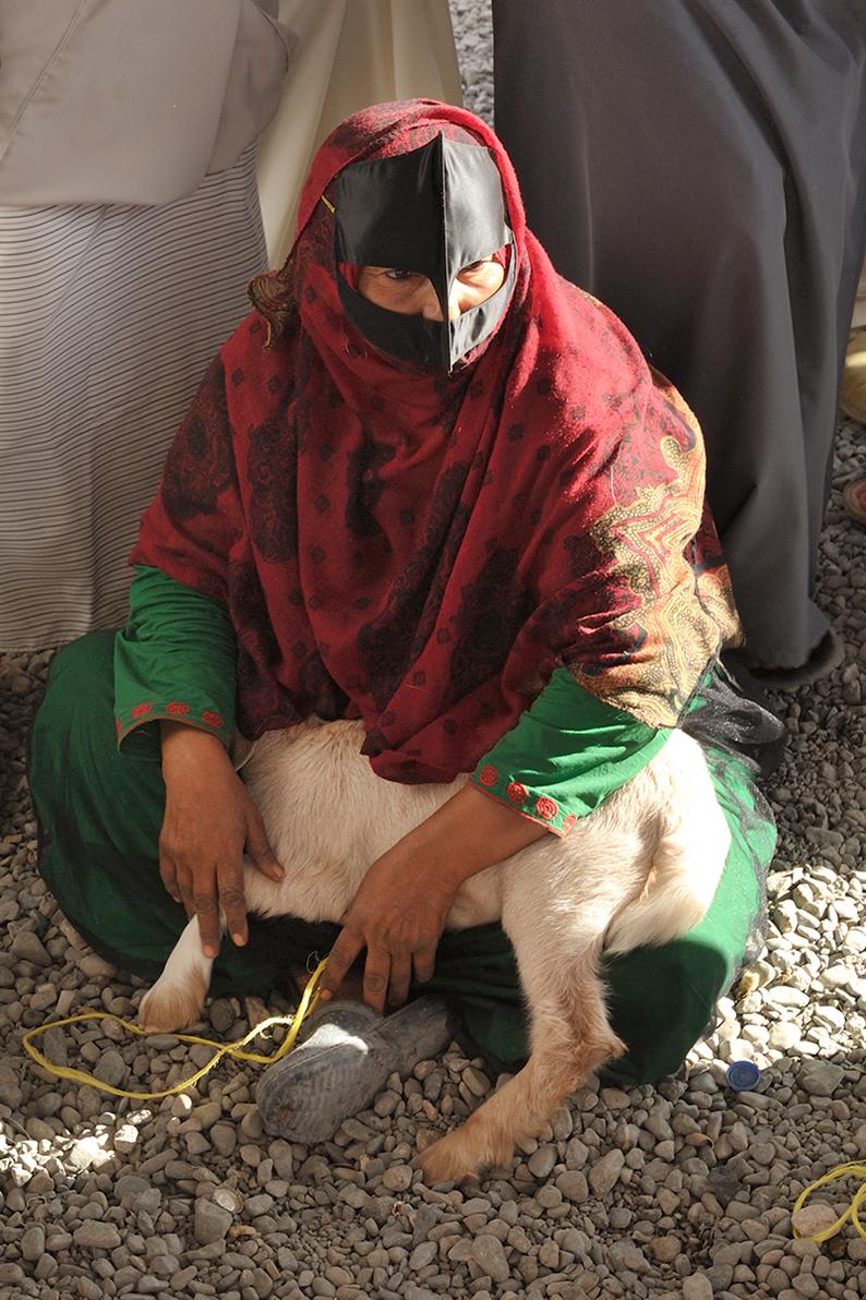 Oman Nizwa animal market