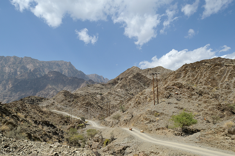 Oman trail Jabal Akhdar Al Hajar