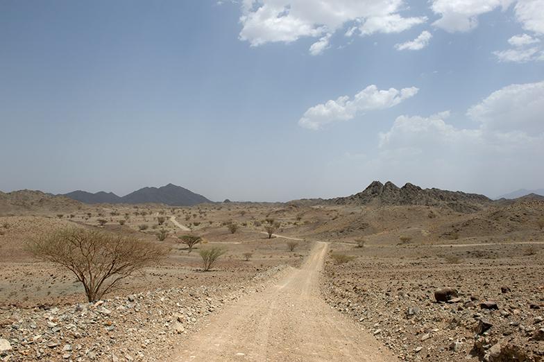 Oman trail