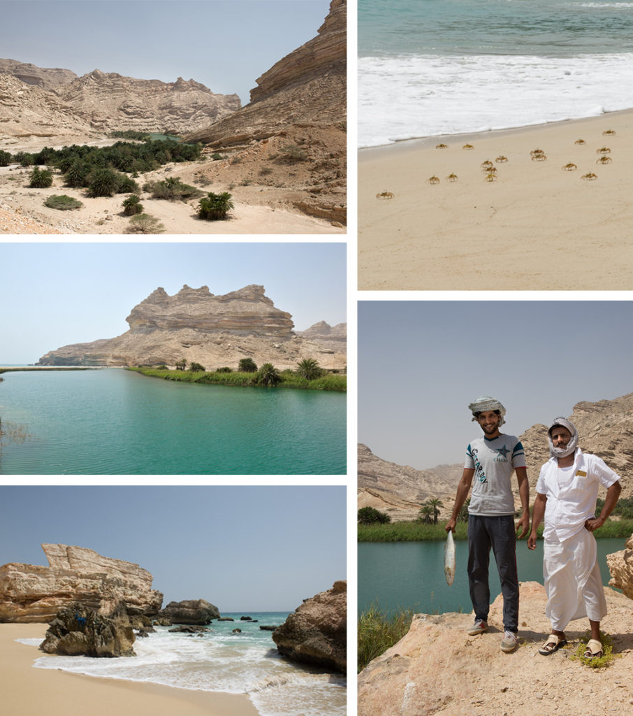 Coves in Dhofar