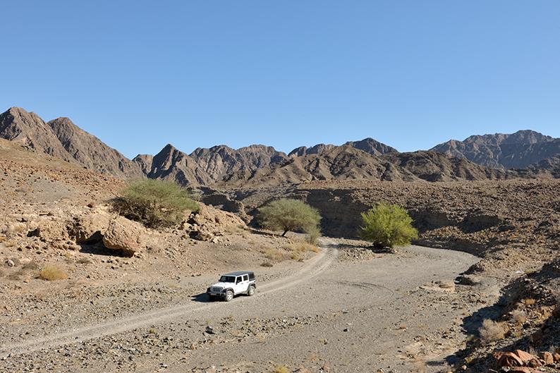 Wadi driving Oman