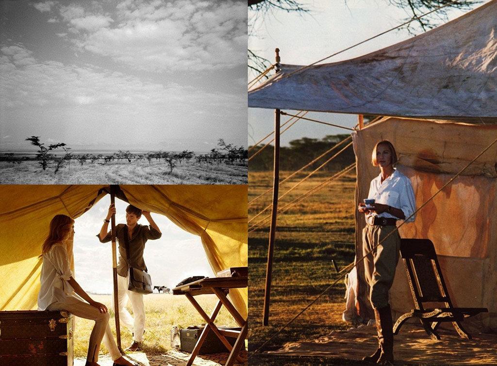 Safari camping