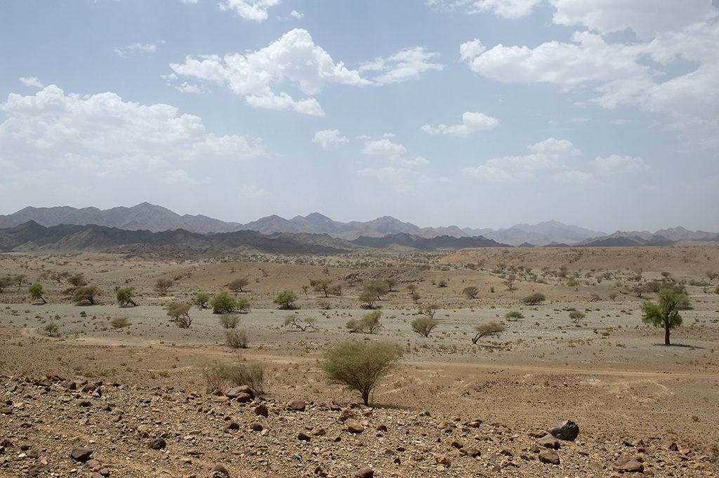 Batinah plain
