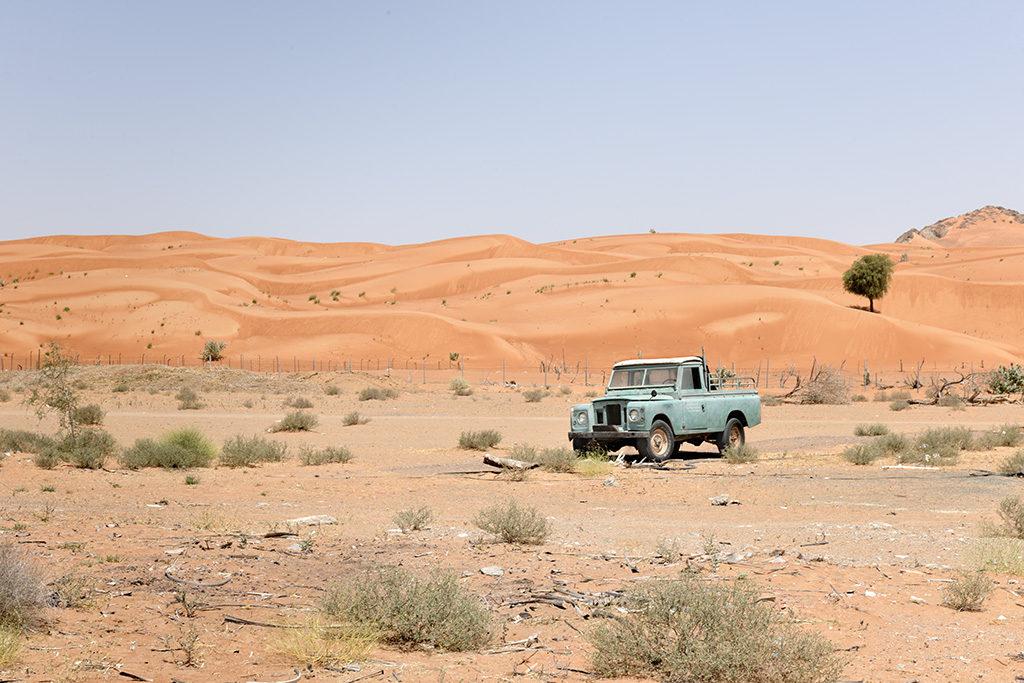 Old rover, resting near Mleiha