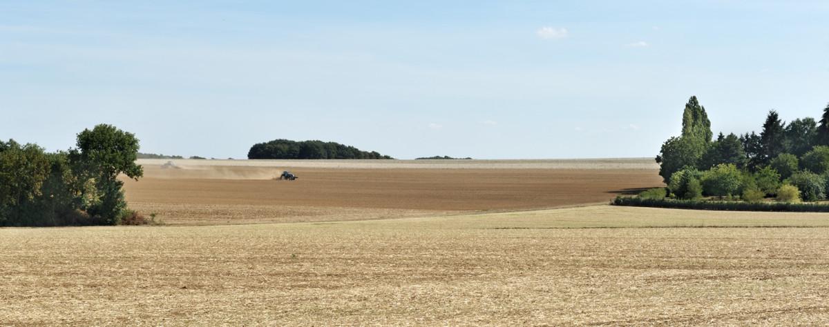 Tractors in the fields